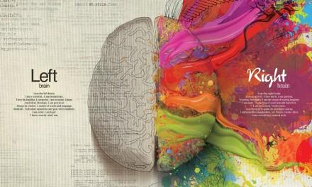Mercedes: Left Brain – Right Brain
