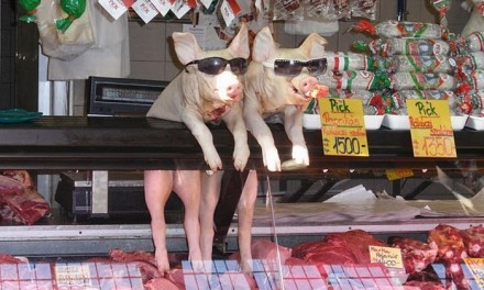 Marketing la magazinul de carne